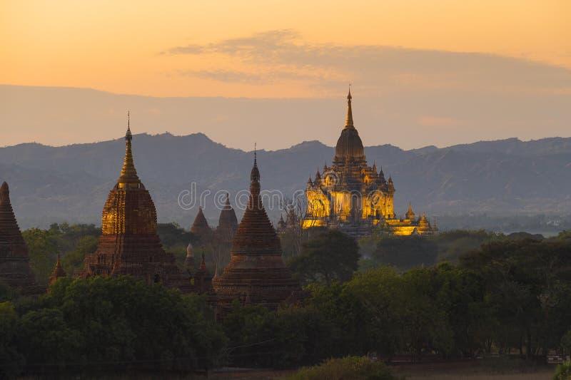 Загоренные виски Bagan в сумраке стоковое изображение rf