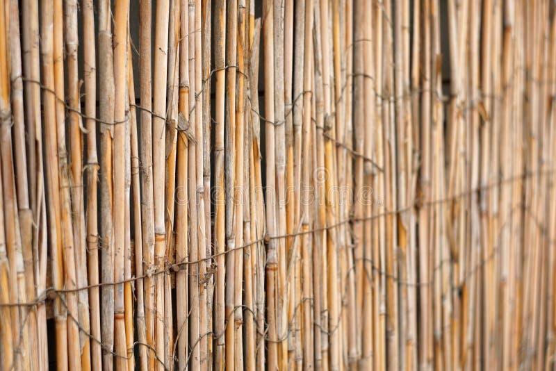 Загородка от тросточки с светом от позади стоковое изображение