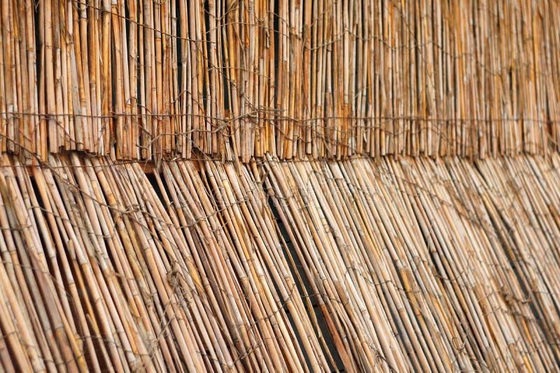Загородка от тросточки с светом от позади стоковое фото rf