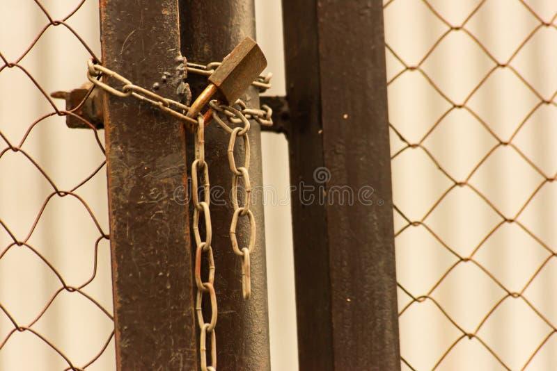 Загородка сетки металла закрыла с цепью стоковые изображения rf