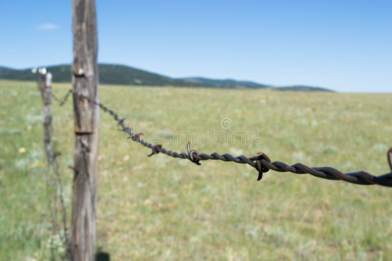 Загородка Barbwired на прериях Вайоминга стоковые фотографии rf