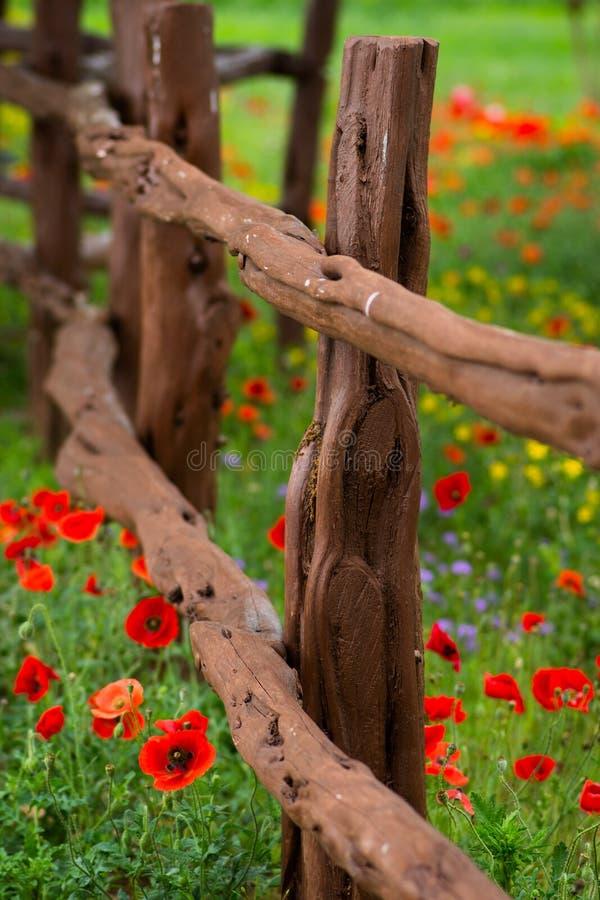 Загородка весеннего времени стоковые изображения rf