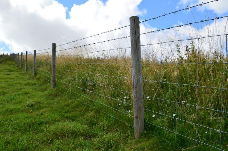 Загородка колючей проволоки вдоль полей луга стоковая фотография