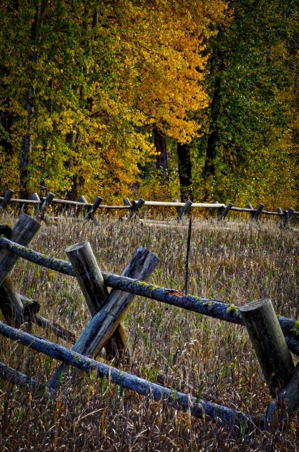 Загородка рельса с хлопоками стоковое изображение rf