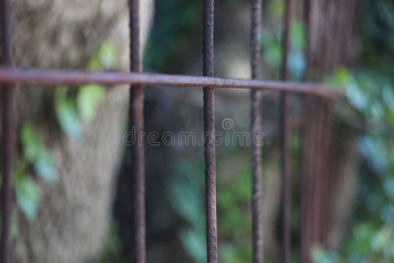 загородка ржавая стоковое изображение rf