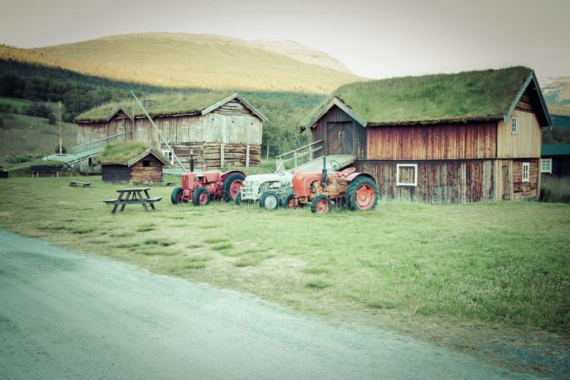Загородный дом крыши травы норвежца типичный стоковая фотография