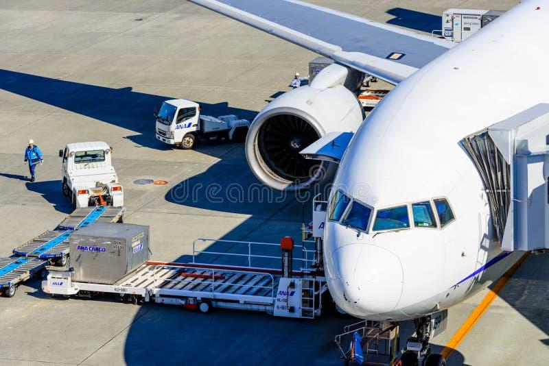 Загрузка самолета на грузе стоковые фотографии rf