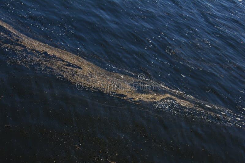 Загрязнение воды, серьезная глобальная проблема стоковые изображения