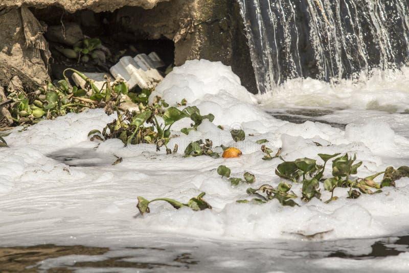 Загрязнение воды в реке стоковое фото rf