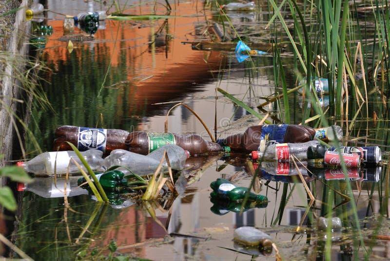 Загрязнение в воде озера, Румыния стоковые фото