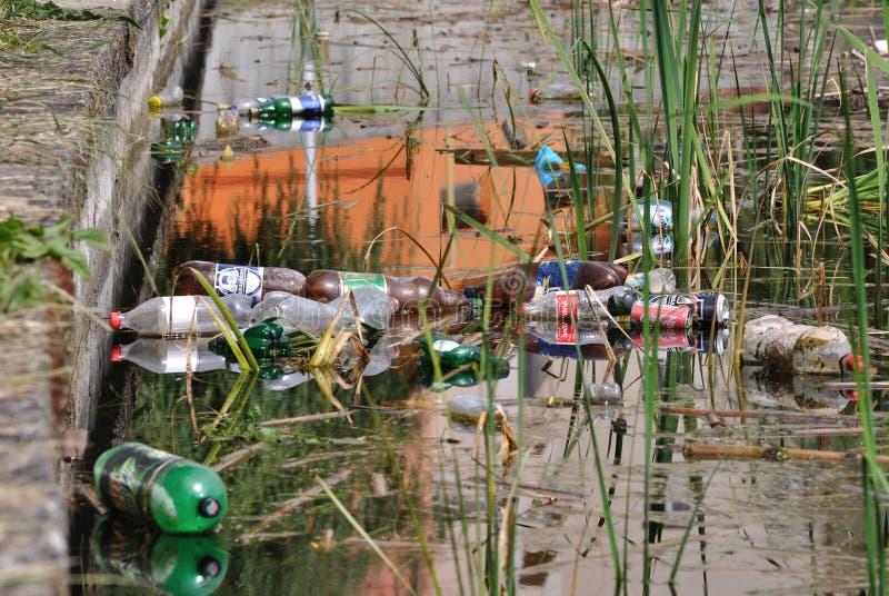 Загрязнение в воде озера, Румыния стоковое фото rf