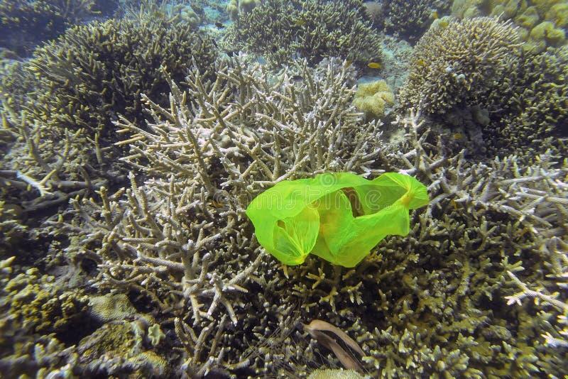Загрязнение кораллового рифа стоковое изображение rf
