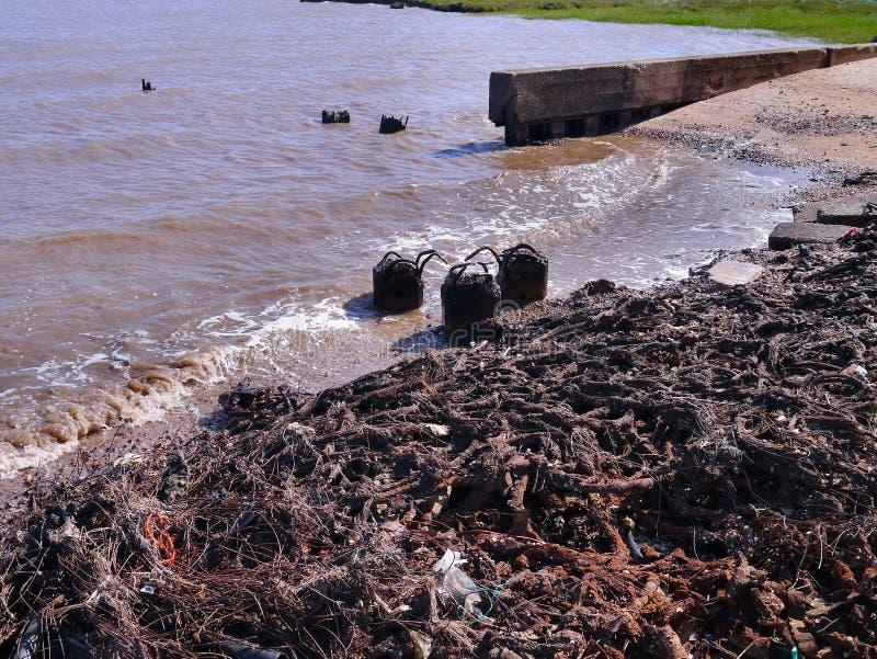 Загрязнение seashore стоковые изображения rf