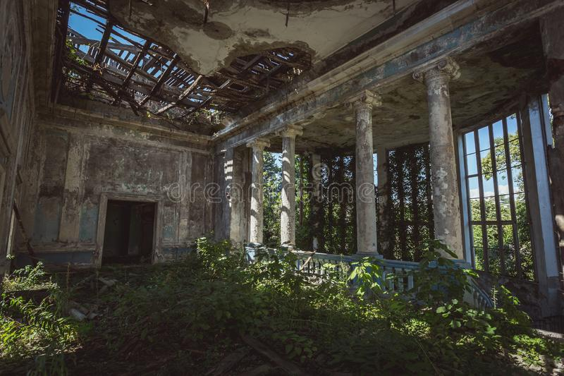 Загубленный интерьер залы особняка перерастанный заводами Природа и получившаяся отказ архитектура, зеленая пост-апоралипсическая стоковые фотографии rf