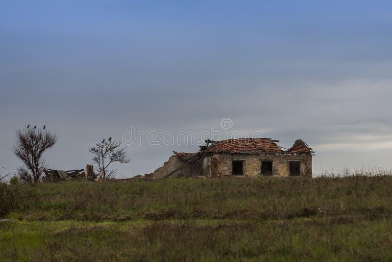 Загубленный и необжитый дом на фоне драматического неба и черных птиц стоит на деревьях стоковые изображения