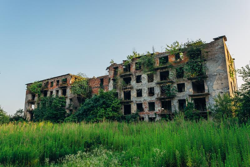 Загубленный перерастанный многоквартирный дом с метками в город-привидении, последствиями пули войны в абхазии, зеленой пост-апор стоковое фото
