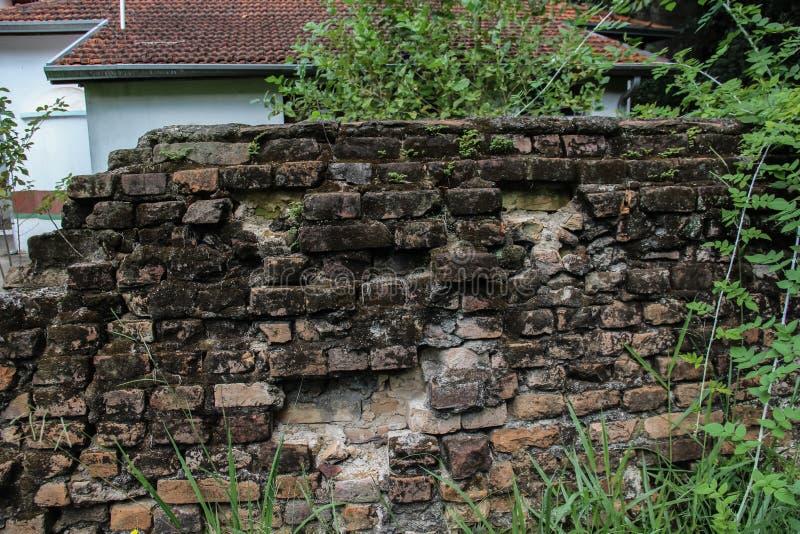 Загубленная стена стоковые изображения