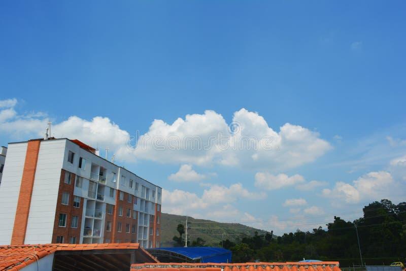 Задворк дома с баскетбольной площадкой и другими домами на заднем плане стоковое фото rf