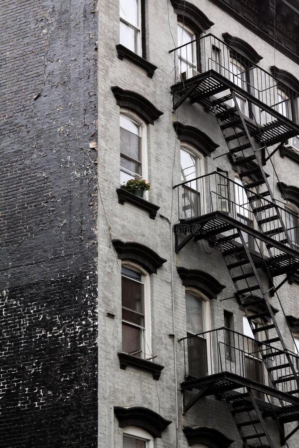 Задворк лестниц огня стоковые фотографии rf