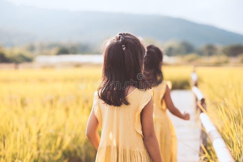 Задний взгляд 2 маленьких девочек идя совместно в бамбуковую дорожку стоковая фотография
