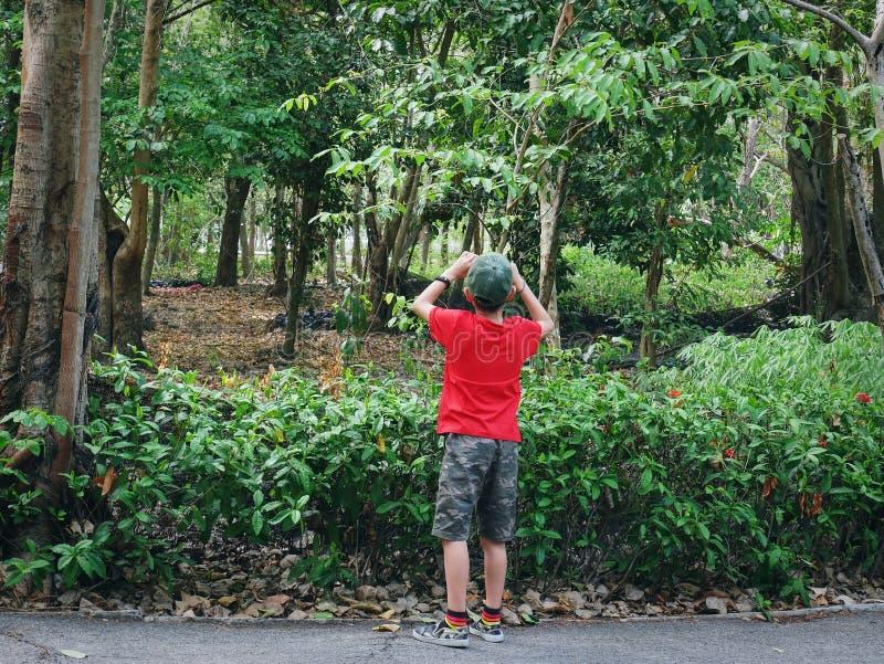 Задний взгляд мальчика со случайной одеждой принимая фото пейзажа с компактной камерой стоковое фото rf