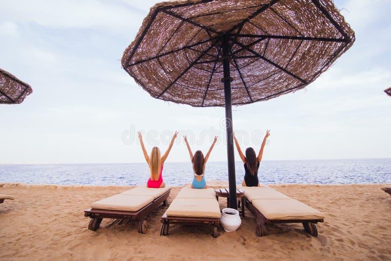 Задний портрет взгляда 3 сексуальных друзей женщин сидя и отдыхая в креслах для отдыха с зонтиком на пляже моря изолированная бел стоковое фото