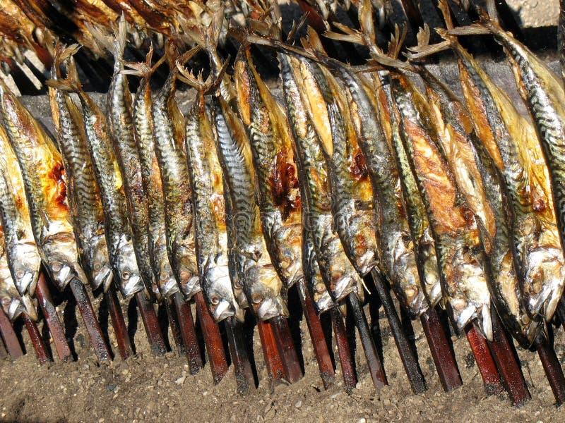 заедк рыб oktoberfest, котор курят стоковое изображение