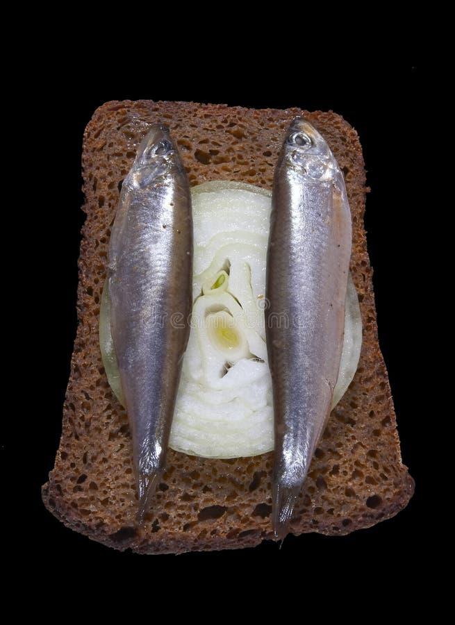 Download заедк стоковое фото. изображение насчитывающей укусы, обед - 489138