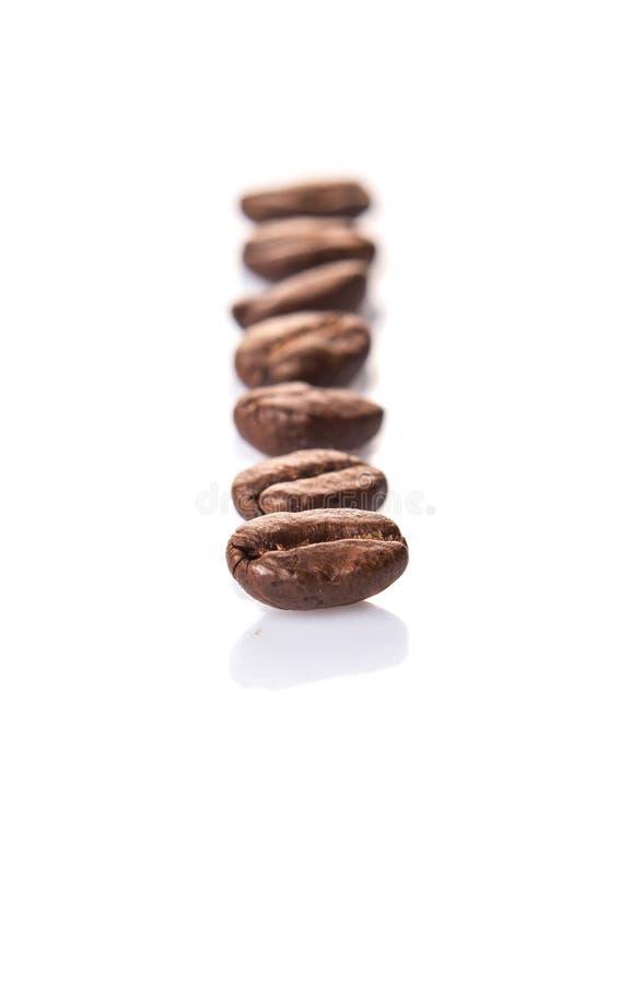 Зажаренное в духовке кофейное зерно II стоковые изображения rf