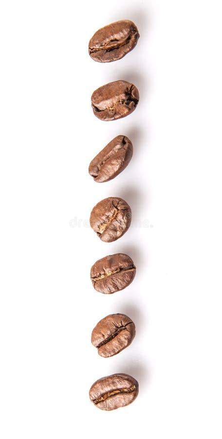Зажаренное в духовке кофейное зерно VI стоковое изображение