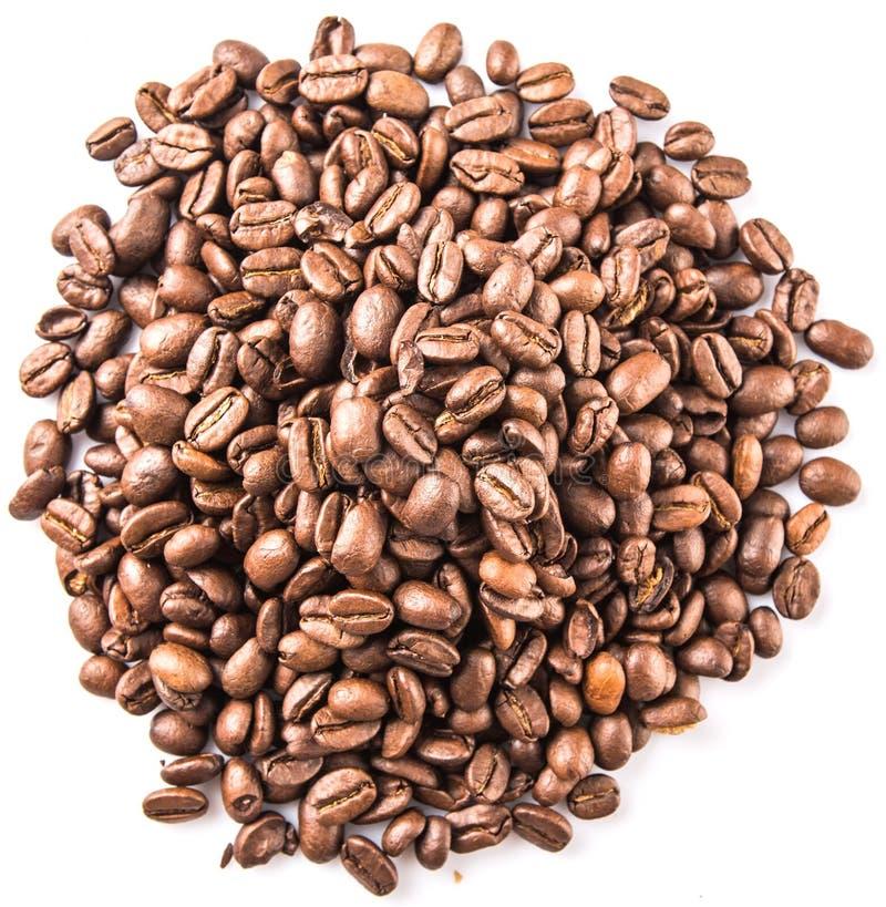 Зажаренное в духовке кофейное зерно VIII стоковое фото