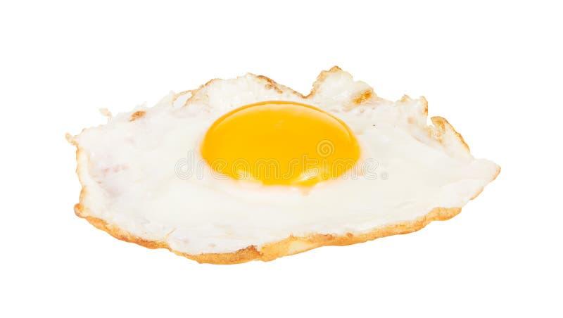 зажаренное яичко цыпленка кудрявое изолированным стоковое фото rf