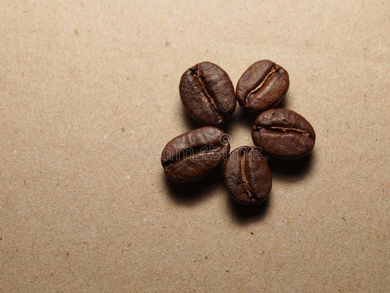 Зажаренные в духовке кофейные зерна на бумажной текстуре стоковые фотографии rf