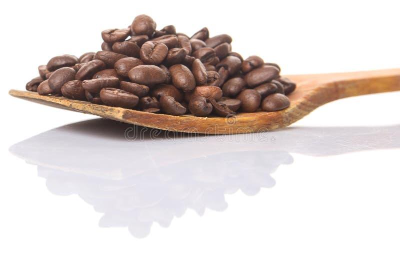 Зажаренные в духовке кофейные зерна на деревянном шпателе i стоковые фотографии rf