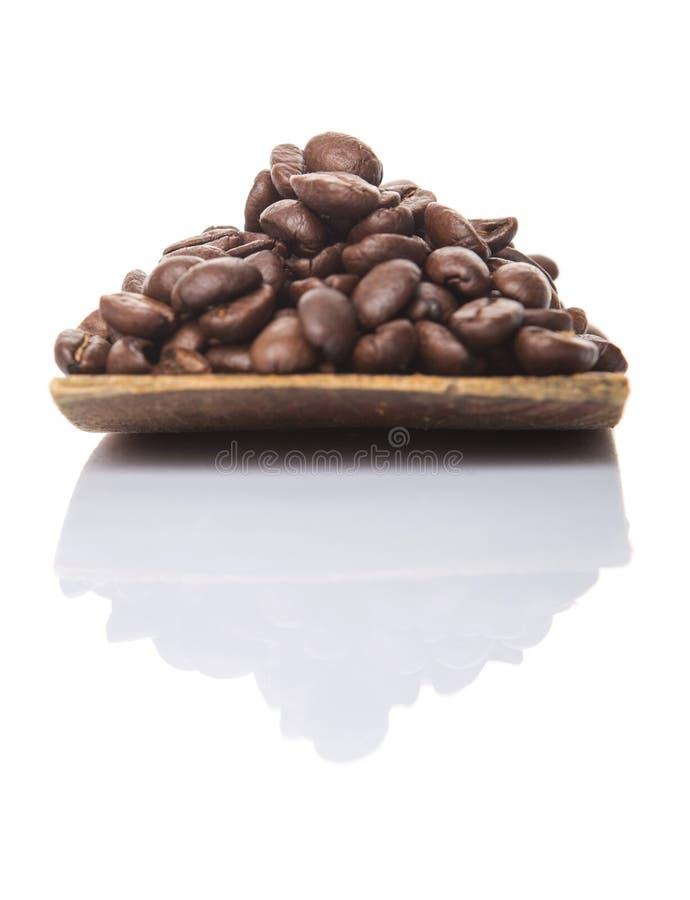 Зажаренные в духовке кофейные зерна на деревянном шпателе IV стоковая фотография rf