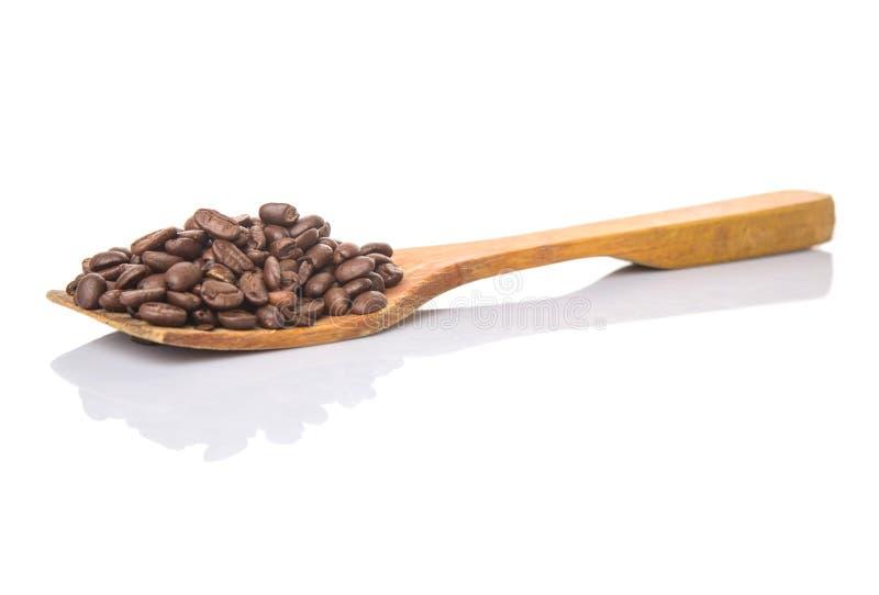 Зажаренные в духовке кофейные зерна на деревянном шпателе v стоковые фотографии rf