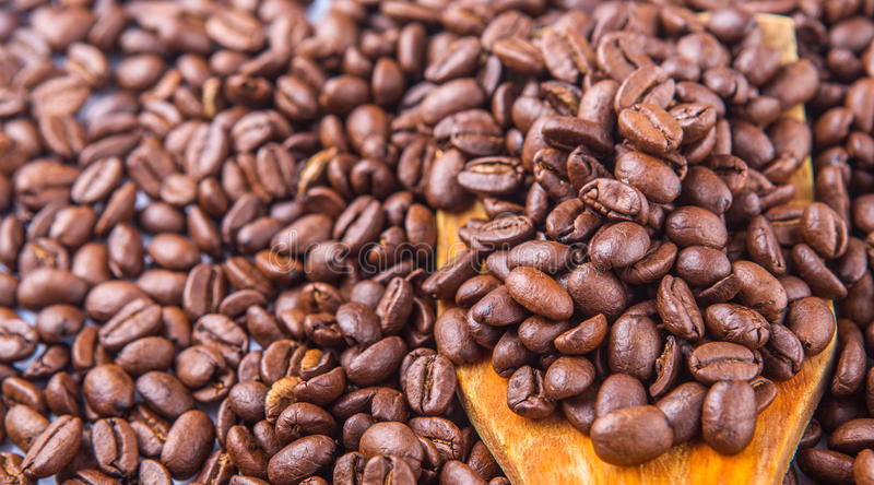 Зажаренные в духовке кофейные зерна II стоковая фотография