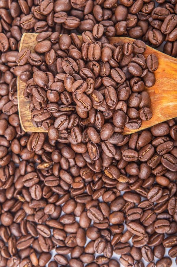 Зажаренные в духовке кофейные зерна v стоковое фото rf