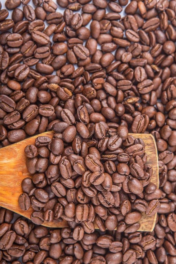 Зажаренные в духовке кофейные зерна VII стоковые изображения