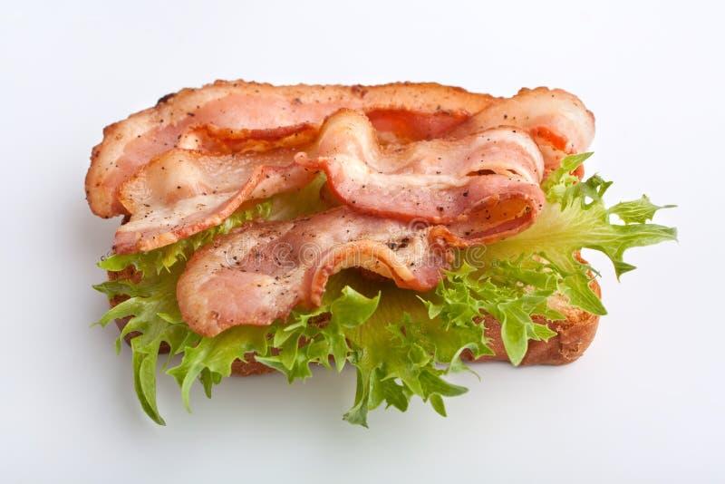 зажаренный беконом горячий сандвич салата стоковая фотография