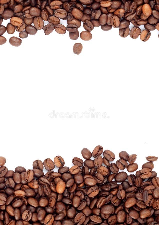 зажаренный в духовке кофе фасолей коричневый стоковые фотографии rf