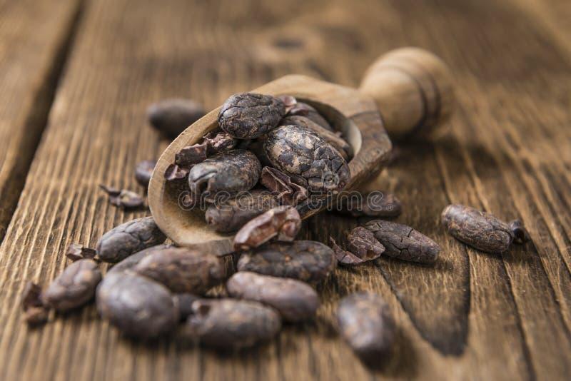 зажаренный в духовке cacao фасолей стоковые изображения