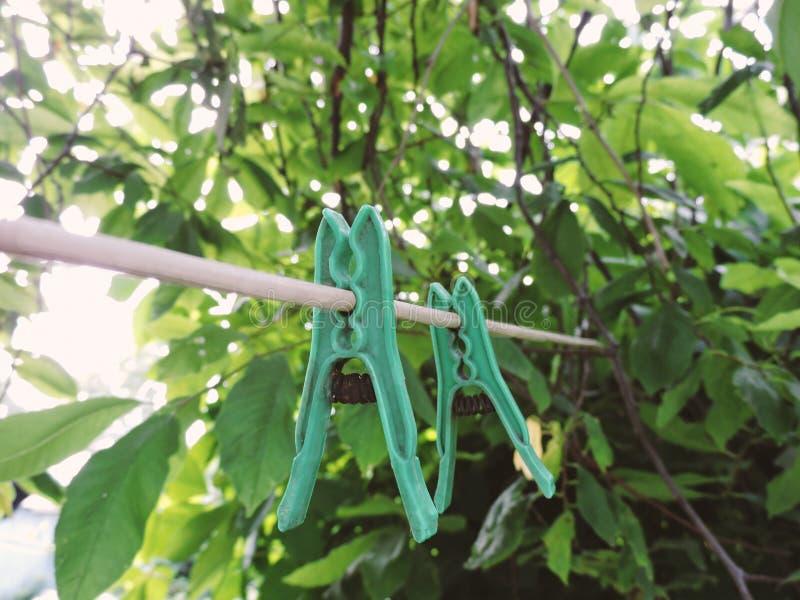Зажимки для белья белья во дворе Пластиковая зажимка для белья белья на старой веревочке на зеленой предпосылке стоковое изображение