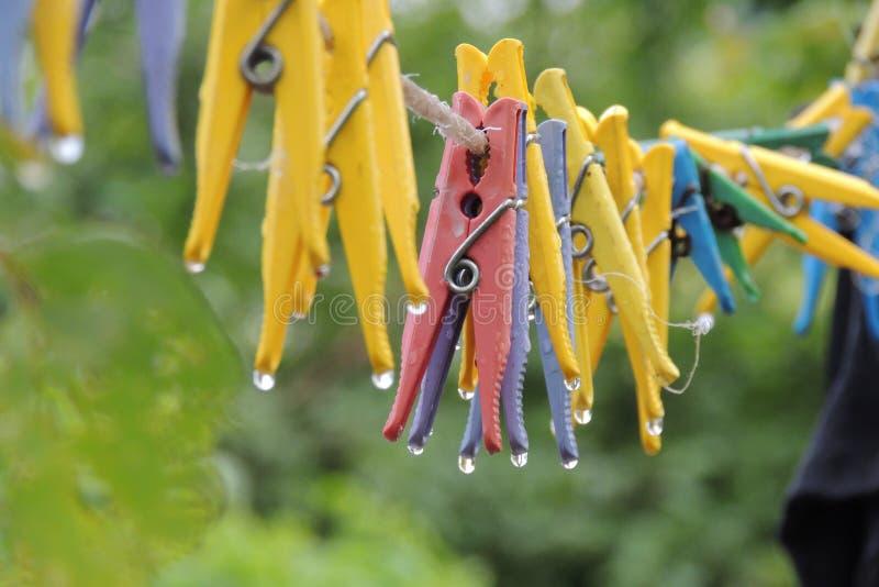 Зажимки для белья на веревочке стоковые изображения rf
