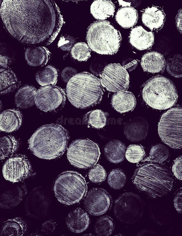 Зазор леса - деревянные балки как предпосылка природы стоковое изображение rf