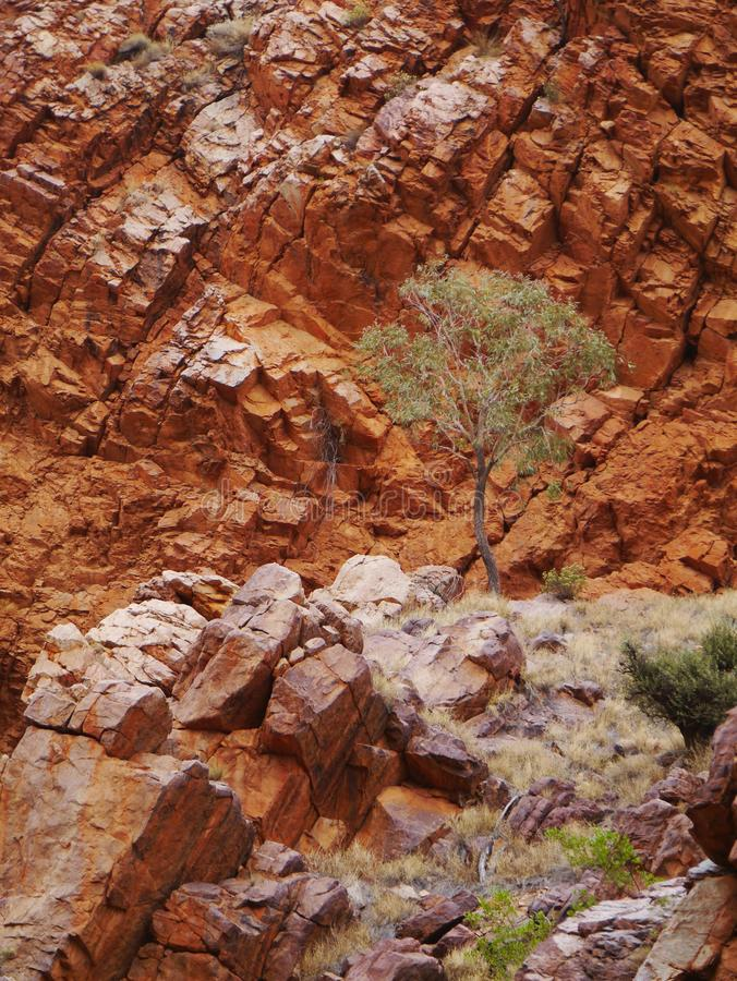 Зазор emily стоковое фото