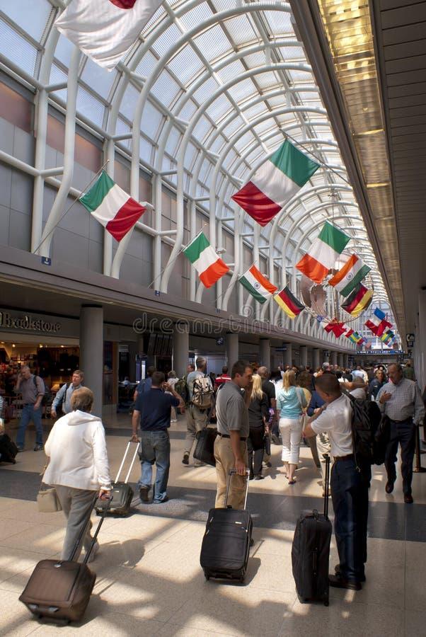 зайцы международный o chicago авиапорта стоковая фотография