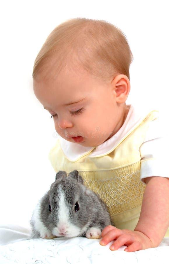 зайчик мальчика стоковое фото rf