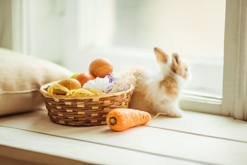 Зайчик пасхи милый сидя на силле окна с корзиной покрашенных яичек и морковей стоковое изображение