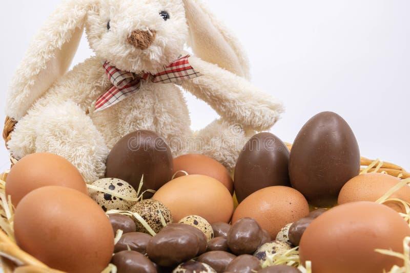 Зайчик пасхи представляет вам его будущее распределение пасхальных яя стоковая фотография rf
